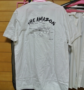 the_amazon.jpg